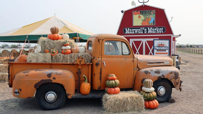 Maxwell's Pumpkin Farm prepares for the 2020 season with new features and activities as well as old favorites.