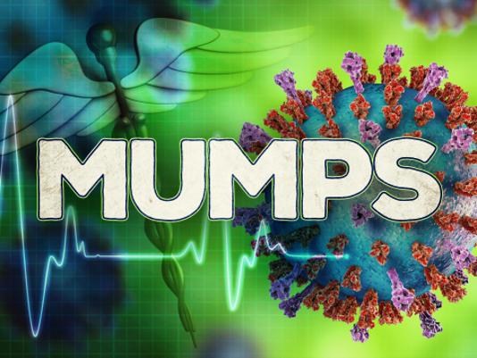 636295129693686493-mumps-pic.png