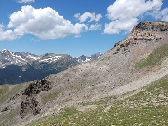 A myriad of other social trails leading from the Crater Trail in Rocky Mountain National Park.