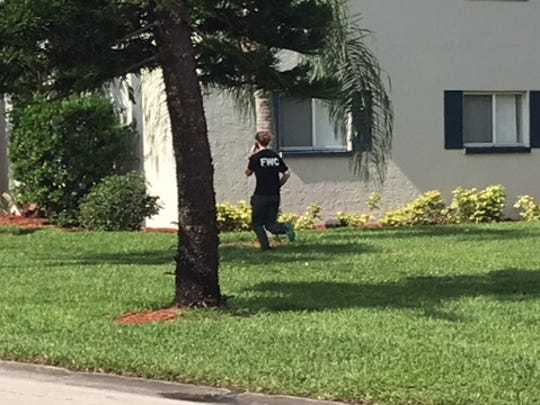 An FWC worker runs through yards at Park Place East apartments on DeLeon Street where a black bear was sighted on Monday.
