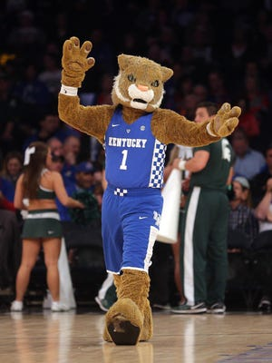 Nov 15, 2016; New York, NY, USA; The Kentucky Wildcats mascot performs during a game against the Michigan State Spartans at Madison Square Garden.