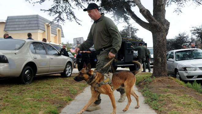 This file photo shows Daniel Casson, an Oxnard Police Department senior officer, with his dog Jax searching for narcotics outside a house in the Marina West neighborhood in Oxnard. Jax died earlier this year from complications of a tumor near his heart and lung. With council approval, the Windrow Dog Park will be named after Jax.