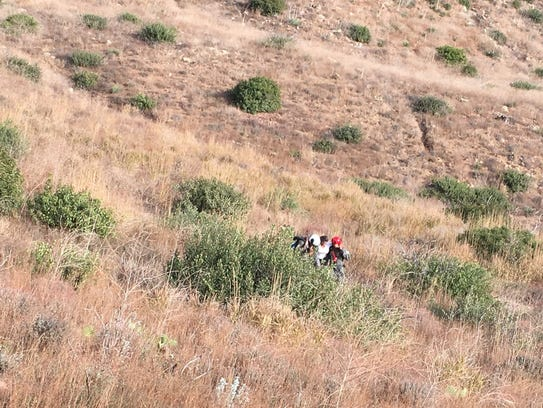 Fire and rescue crews helped an injured hiker who sprained