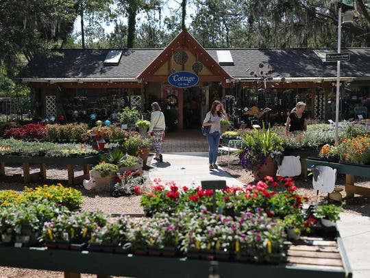 Shoppers walk the many rows of plants and flowers at