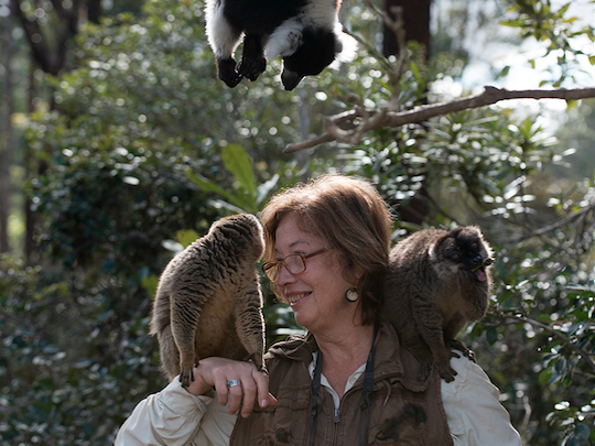 """Indianapolis Prize nominee Dr. Patricia Wright has a starring role in """"Island of Lemurs: Madagascar"""" which opens on April 4, 2014 in Indianapolis."""