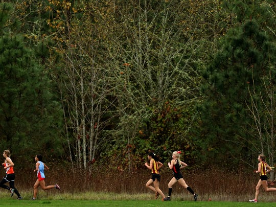 Runners compete in the Greater Valley Conference championship