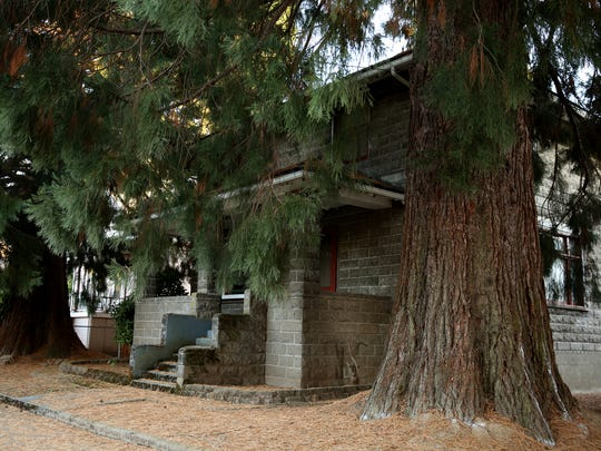 Two sequoia trees in front of a historic home on Chemeketa St. NE will have to be removed because their roots are causing damage to home's basement, the sidewalk and a neighbor's driveway. Photographed in Salem on Friday, Oct. 6, 2017.