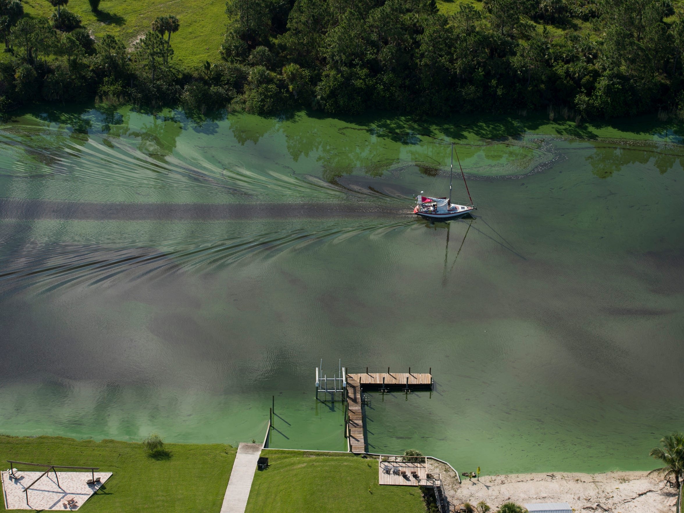A sailboat travels through the algae-infested water of the C-44 Canal on Thursday in Martin County. Since June 1, about 25 billion gallons of Lake Okeechobee water has been discharged from the gates at the St. Lucie Lock and Dam into the St. Lucie River, concerning residents and damaging local businesses.