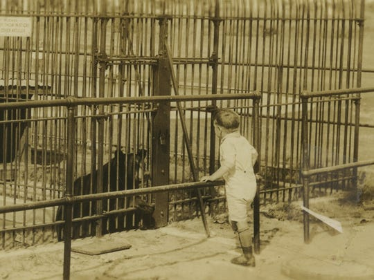 A child visits Alice the Bear, who lived in a zoo in