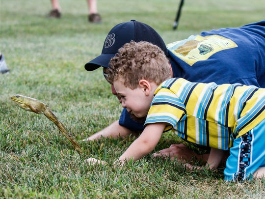 Three-year-old Hunter Brahm of Lacrosse and his dad Matt compete in the Wisconsin state frog jump at Dousman Derby Days on Sunday, July 29, 2018.