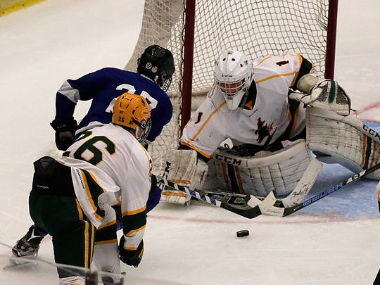 Goalie Michael Janke (right) led D.C. Everest to the state tournament after a third place finish in the WVC.