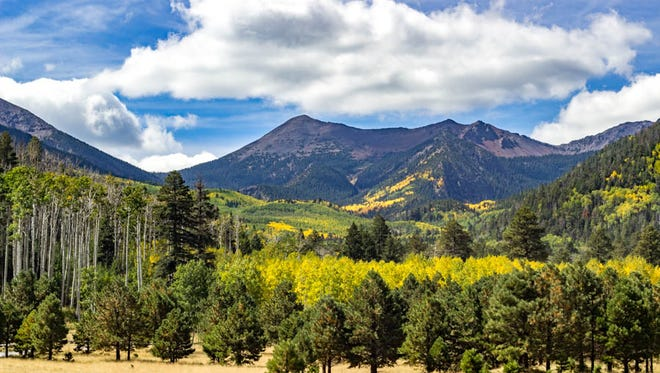 The changing colors along the Inner Basin Trail and San Francisco Peaks.