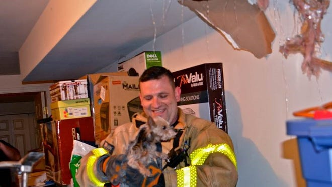Snickers, after being safely removed by firefighter EJ Lakuriqi, was returned to his owner