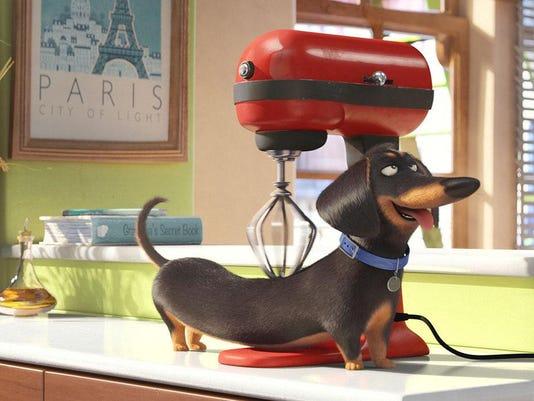 Secret Life of Pets Universal art