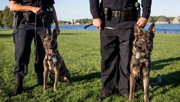 Port Huron Police dogs Knight and Blaze pictured Tuesday, Oct. 4, 2016 at Kiefer Park in Port Huron.