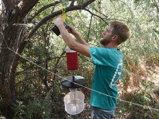 636087819371177438-FTC072516-mosquito-testing-08.JPG