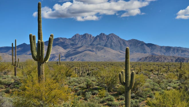 The Four Peaks, a prominent landmark in the northeast Valley, is part of the Mazatzal Mountains.