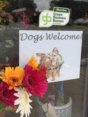 Steins at Sunset Florist in Burlington and Philadelphia is ready to welcome man's best friend in a big way.