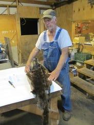 Joe Duryee, Bolivar fur dealer, displays an otter pelt.