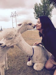Those who attend the Alpaca Odyssey at LondonDairy