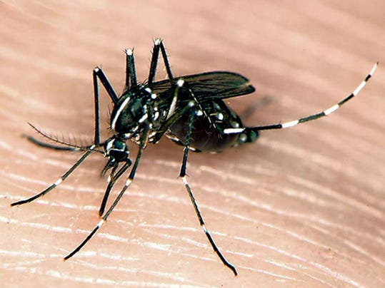 how to get rid of asian tiger mosquito