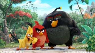 A scene from the 'Angry Birds' movie, which launches in 2016.