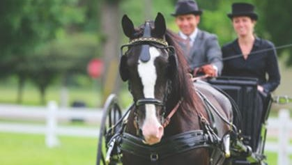 The annual gathering of mid-west horses, carriages, drivers, and spectators will return to Father's Day weekend on June 17th and 18th at Fireman's Park in downtown Columbus, WI.