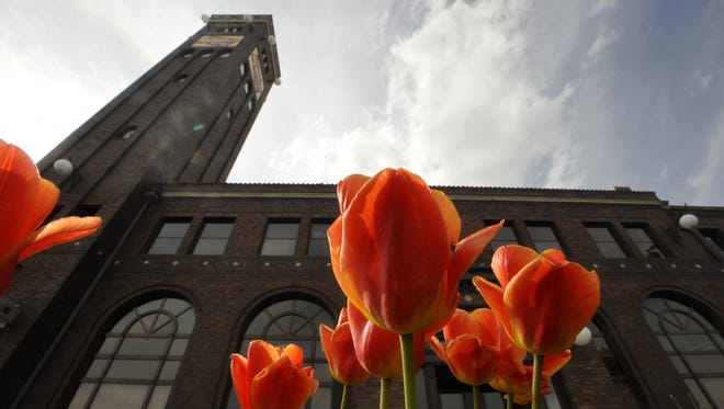 Tulips shine in the evening sun at the entrance of the Milwaukee Station building.
