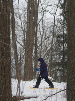 Snow flies as a snowshoer moves through the woods at the Schlitz Audubon Nature Center.