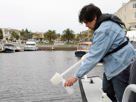 Oxnard Public Works Director Rosemarie Gaglione is seen in this June 2018 photo taking a water sample from the Channel Islands Harbor. Water quality is a major concern for Seabridge residents and others living at the marina.