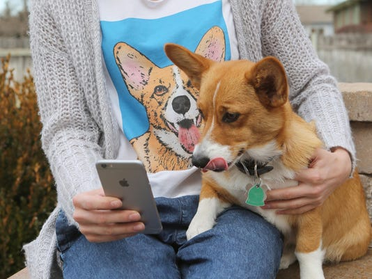 Social media goes to the dogs (and cats)