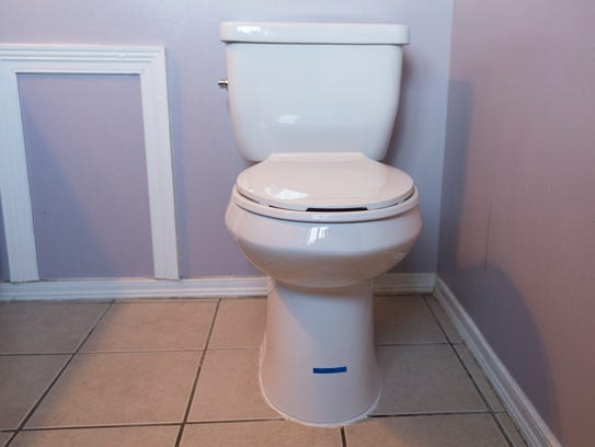 Susan Kulczyk's new toilet is part of a program run