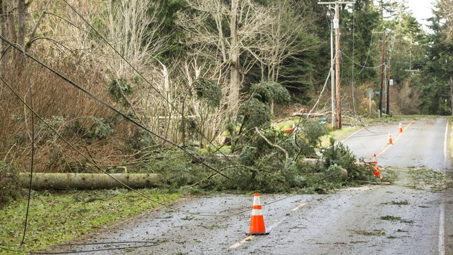 Eversource does preemptive tree trimming and prepares for the summer's storms to minimize the amount of damage and outages.