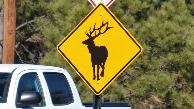 An elk sign went up on Hull Road at the intersection with Paradise Canyon.