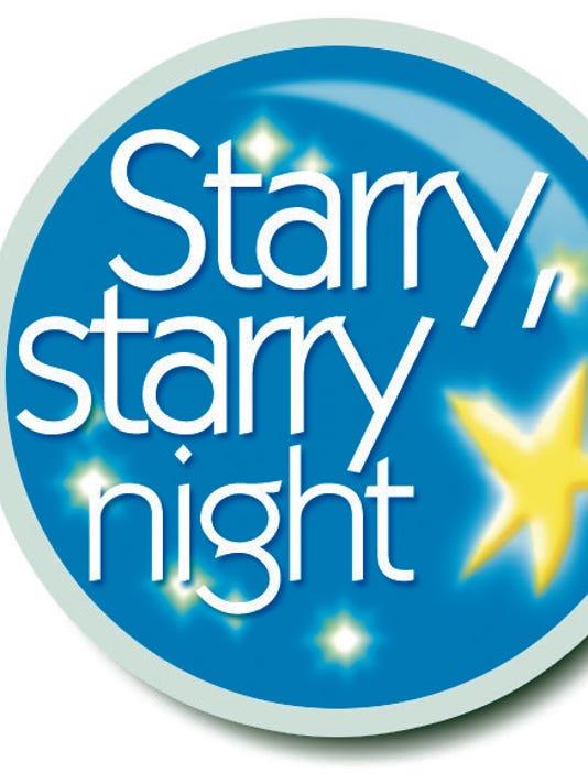 635696170639702099-StarryNight