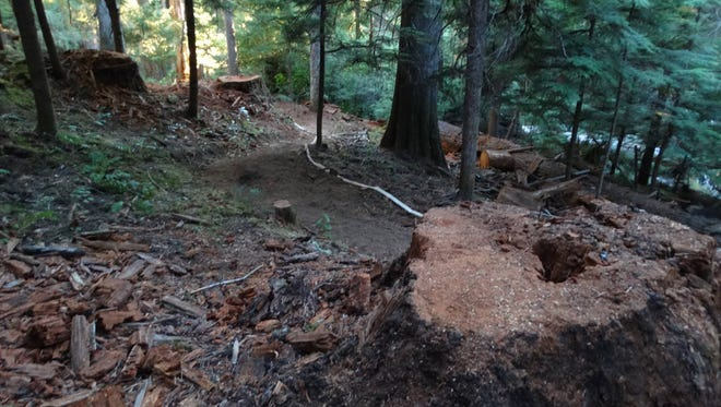 Pictures of the Emerald Forest Loop that was cut to protect the Breitenbush area.