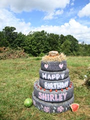 The Elephant Sanctuary in Tennessee celebrated Shirley's