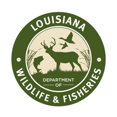 Some roads on the Dewey W. Willis Wildlife Management