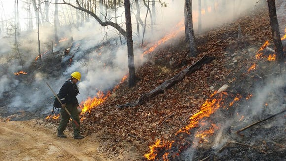 The N.C. Division of Parks and Recreation and the U.S. Forest Service are planning prescribed burns in WNC today and in months to come.