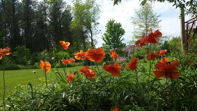 Garden Walk will be July 7and 8 in Rib Mountain.