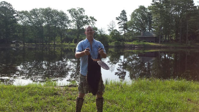 Rob Newman catching a beaver recently.