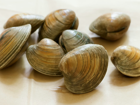 Nothing says ocean and summer like clams
