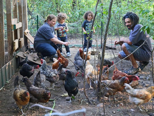 Checking in on their flock of hens are (from left) Emily Brown, twin sons Oliver and Lucius Frazier, 3 1/2, and husband Jimmie Frazier.