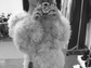 Ariana Grande gushes over her wardrobe for the upcoming