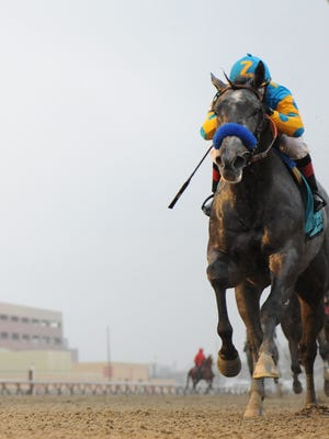El Kabeir, with jockey C.C. Lopez up, won Aqueduct's Jerome with authority. He came back to finish second in the Withers and will try to get back in the winner's circle in the Gotham.