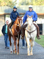 Trainer Larry Jones led the 3-year-old filly I'm A Chatterbox and jockey Florent Geroux into Keeneland's paddock before her workout Sunday morning.