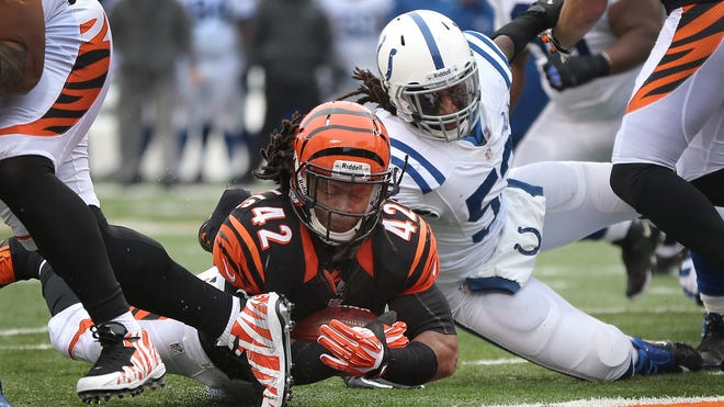 Cincinnati Bengals running back BenJarvus Green-Ellis dives toward the end zone as Indianapolis Colts Kelvin Sheppard (right) lunges at him in a Dec. 8 game at Paul Brown Stadium.