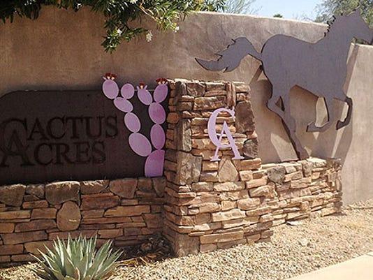 CactusAcres3