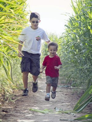 10/1-11/6: Vertuccio Farms Fall Festival and Corn Maze | Come enjoy Vertuccio Farms Fall Festival and Corn Maze, celebrating 18 years of family-friendly fun. In partnership with the Arizona Rattlers, this year's maze design features their logo prominently displayed in seven acres of corn. Guests can venture through the maze, bounce on a giant jump pad, pick their favorite gourd from the pumpkin patch, and hop aboard a tractor pulled grain-train, all while chowing down on freshly popped kettle corn and other fair-food favorites.   Tiny tots can have fun touring the farm on a barrel train, jumping to their hearts content on a giant jump pad, visiting the petting zoo, and swinging by the rubber duck races to cheer for the winner. This year the farm is expanding yet again with two new thrilling attractions; a mini zip line and giant tube roll. Other fall-themed highlights include a mini straw maze, pumpkin bowling, giant tube slide, and even a family-friendly variety show. Plus, discover where pizza comes from while touring Arizona's one and only Pizza Farm. | Details: Saturday, Oct. 1, through Sunday, Nov. 6. Call for times. Vertuccio Farms, 4011 S. Power Rd., Mesa. $9. 480-650-6611, www.vertucciofarms.com.