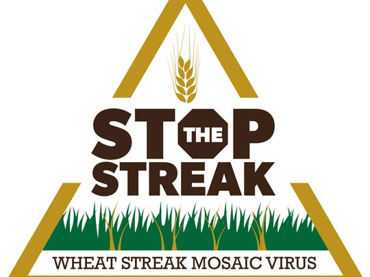 An education campaign titled 'Stop the Streak' aims